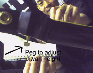 Peg to adjust Siwari height