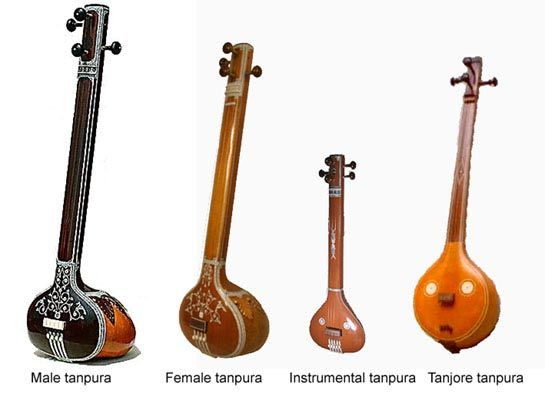 types of tanpuras